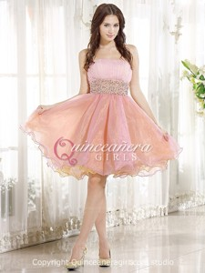 Pink Petite Beaded Strapless Organza Knee Length Quinceanera Dress